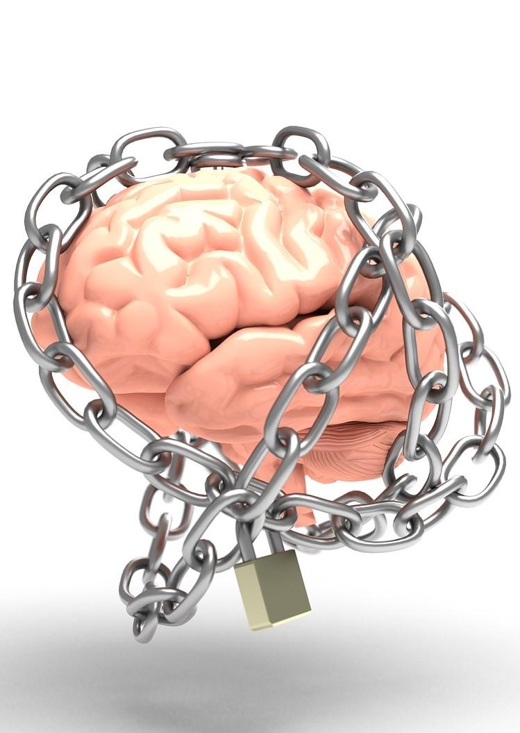 Willway Unlock your brain